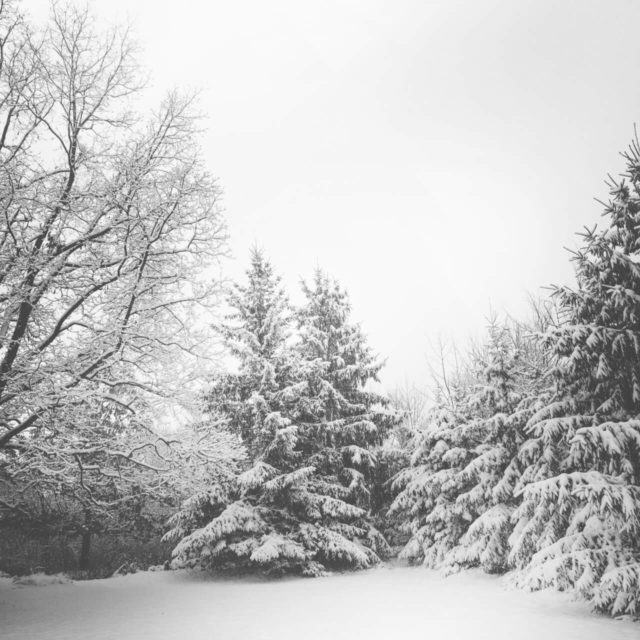 Prima zapada anul acesta in Cavnic